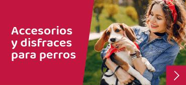 Llegaron Accesorios para Perros a la tienda Roperros Chile